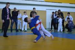 В Рубежном прошли областные соревнования среди юных дзюдоистов