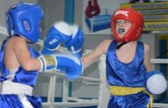 Боксерский турнир  памяти Хрисанкова