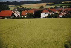 Как скажется административно-территориальная реформа на земельной реформе?