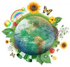Сєвєродонецький міський Центр еколого-натуралістичної творчості учнівської молоді оголошує набір
