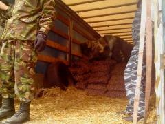 В Северодонецк привезли 20 тонн целевой гуманитарной помощи для бойцов АТО
