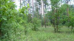"""Створено нову природно-заповідну територію загальнозоологічний заказник місцевого значення""""Жеребець"""""""