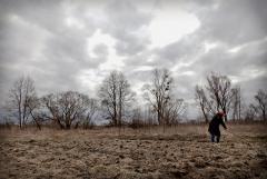 На Луганщине разминировали 5 тысяч гектаров полей