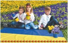 Сєвєродонецькі навчально-виховні заклади долучаються до участі у Всеукраїнській акції «Прапор України - прапор миру»