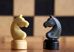 В Сєвєродонецьку хочуть провести благодійний аукціон та створити шаховий клуб