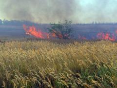 Протягом останніх вихідних 16 та 17 липня рятувальники ліквідували 21 загоряння сухої трави