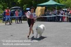 У Сєвєродонецьку пройшла виставка собак