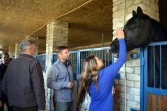 Конные клубы Луганщины планируют турниры и путешествия