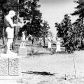 12-1950_vhid_gol_aleyu.jpg