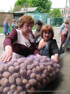 ООН роздав у Луганській області посадкової картоплі на півмільйона гривень