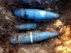 Працівниками державної лісової охорони виявлено боєприпаси, що не розірвалися під час інтенсивних обстрілів території району