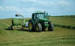 Дождется ли Украина семейных фермерских хозяйств?
