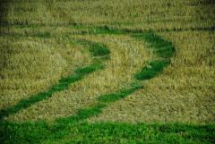 Общественный запрос на аграрные реформы
